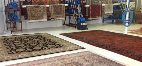 Rug Cleaning In Sydney Eastern Suburbs