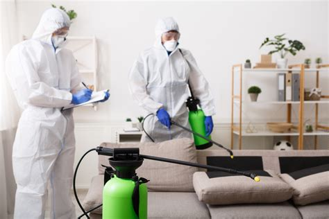 disinfection cleaning services