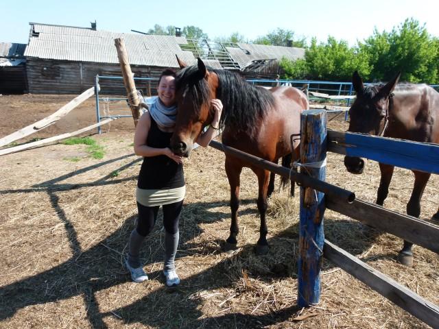 Прокатный конь не принимает новичка