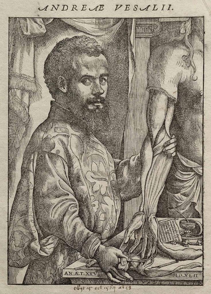 Портрет Везалия из его книги по анатомии человека.jpg