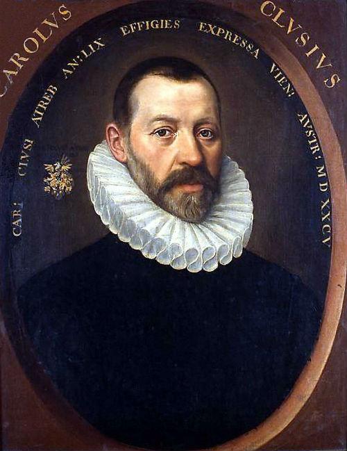 3-Портрет Карда Клузиуса - Приписывается Якобу де Монте - 1585.jpg