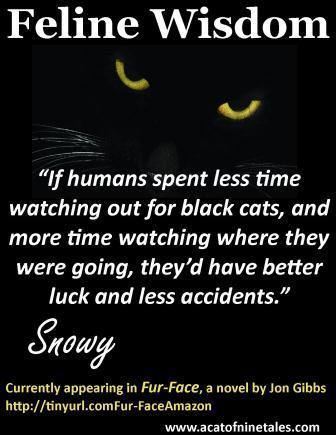 Feline Wisdom - Black Cats - compressed