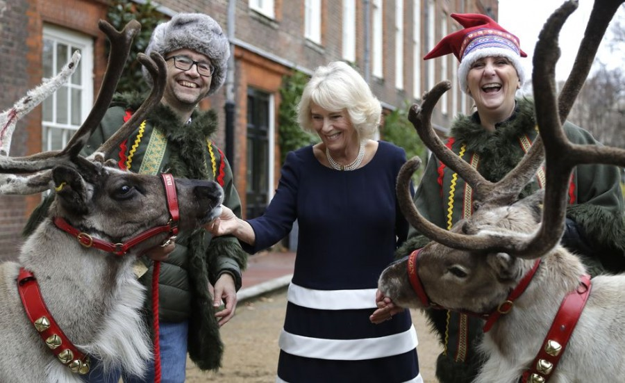 camilla-duchess-of-cornwall-meets-reindeer-dancer-left-and-news-photo-1068967036-1544738501