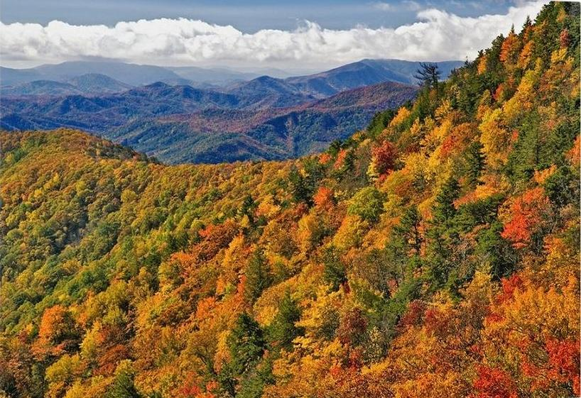 Огородами appalachian-mountains-in-autumn,2225631