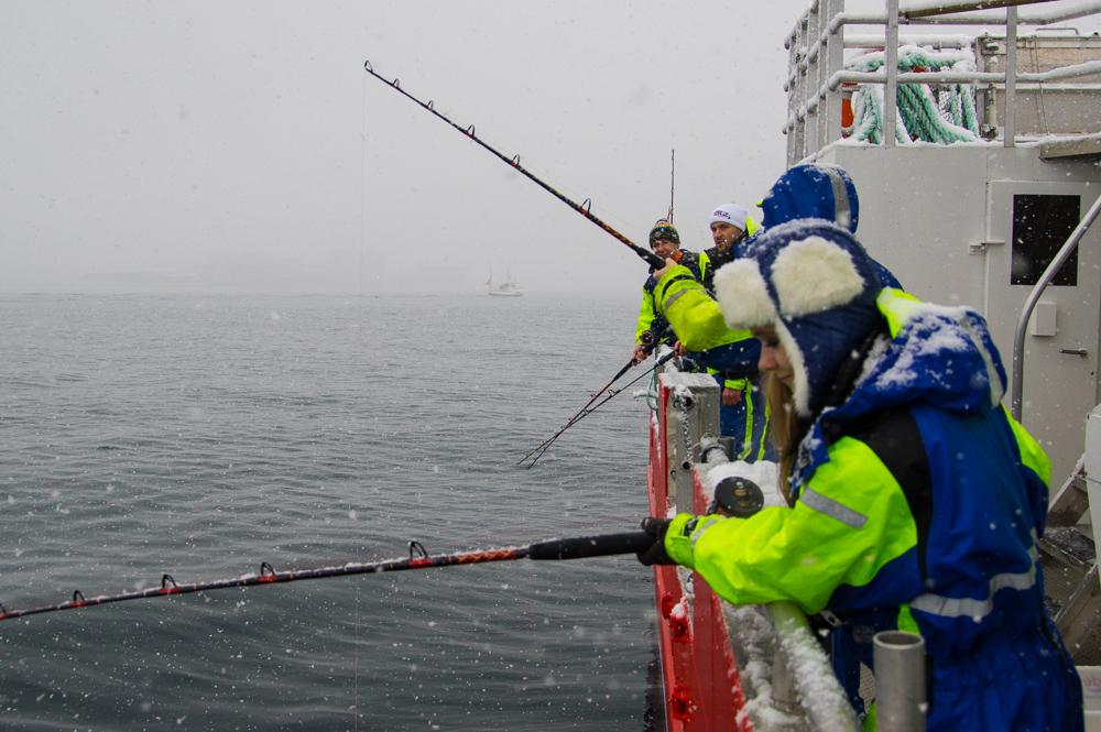 видео рыбалка снасти прикормка