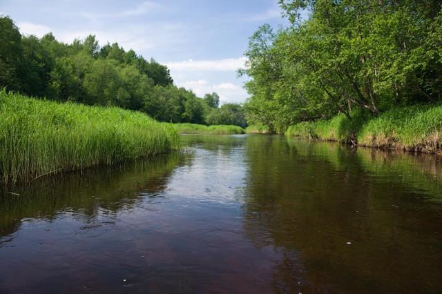 рыбалка на реке тудовка