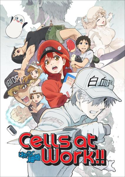 CellsAtWorkSeason2.jpg