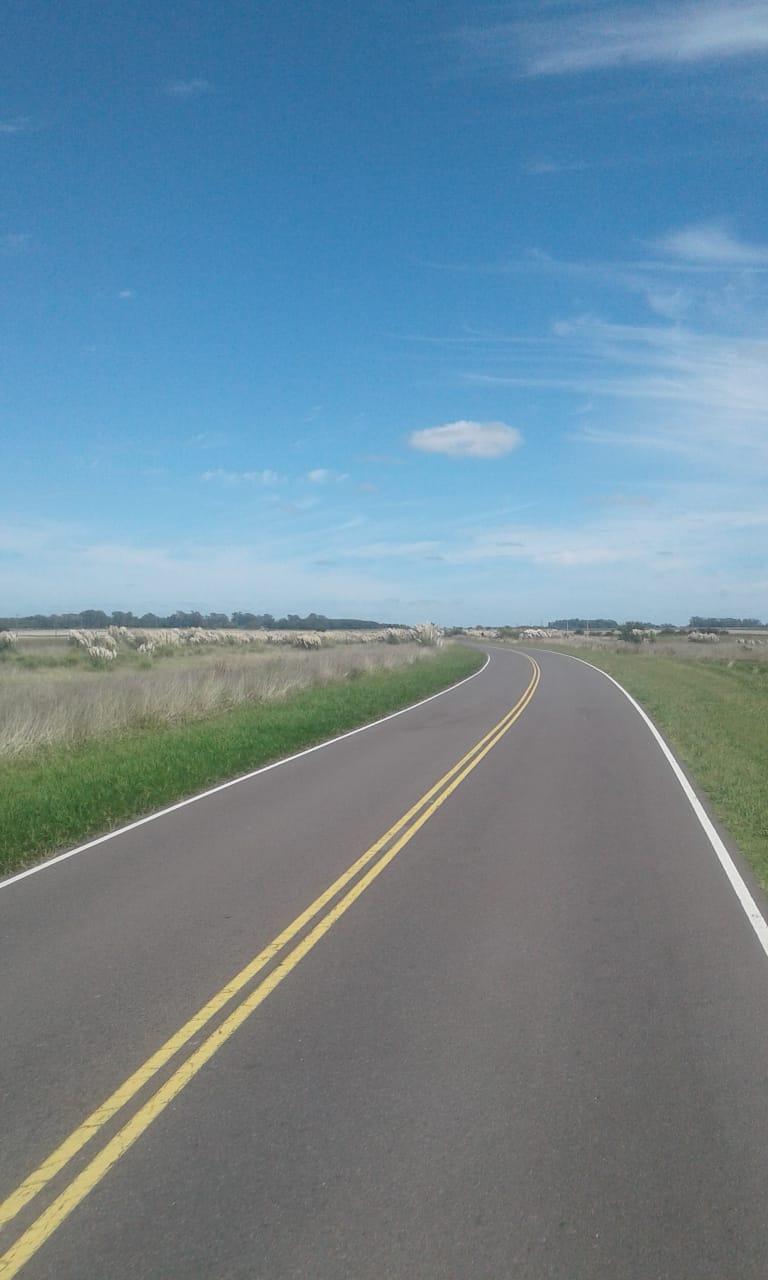 Провинциальная дорога номер 29. Слева, справа, сзади и впереди — пампасы, сливающиеся на горизонте с синим небом.