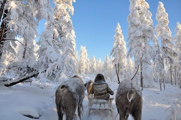 «Полюс холода» Оймакон в Якутии