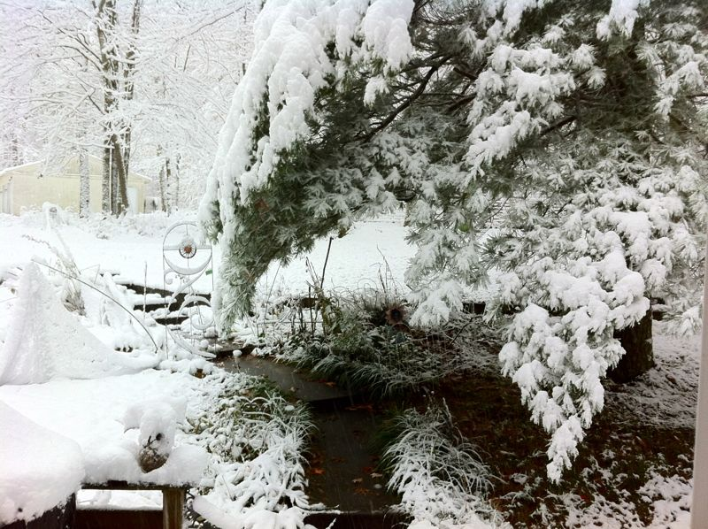 snowtober - west virginia