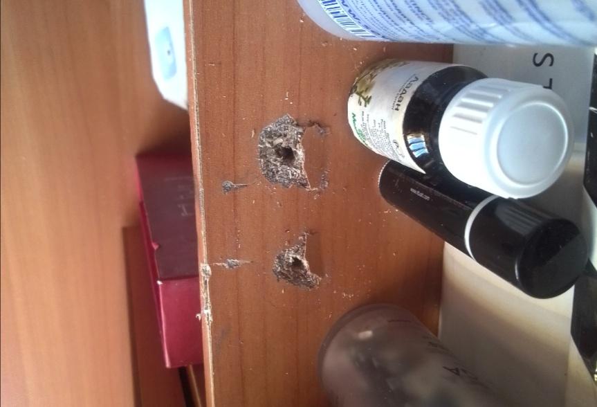 Некто сломал дверцу шкафа. Подскажите пжлста варианты решения. Может в отверстия вставить пластиковые штуки, которые в бетонные вставляют?