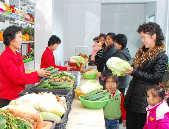 И холодной зимой горожане получают свежие огурцы, помидоры, кочанную капусту, шпинат и проче