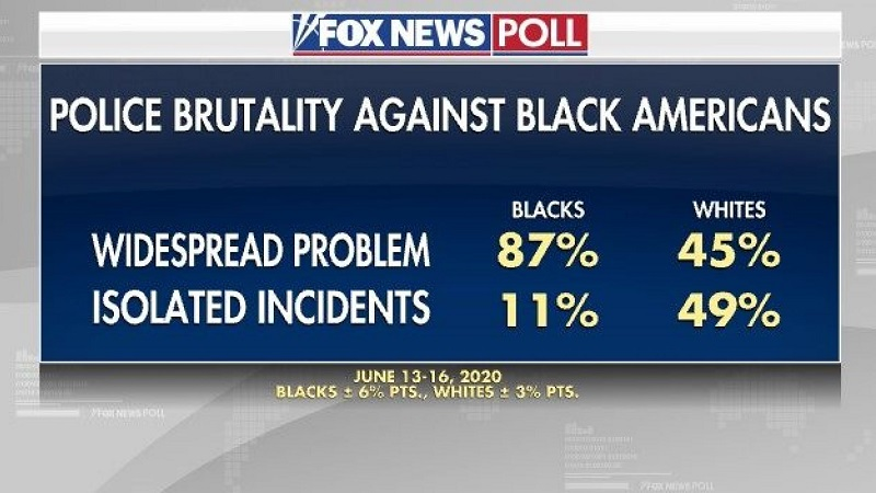 вопрос о жестокости полиции