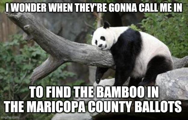 панда хочет стать волонтёром
