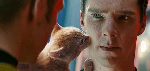 Benedict-Cumberbatch-Cats