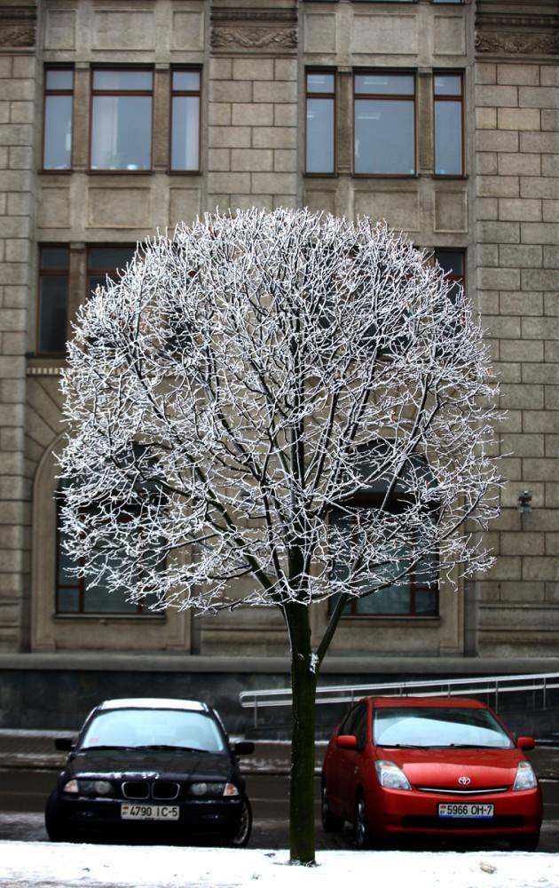 зимой а