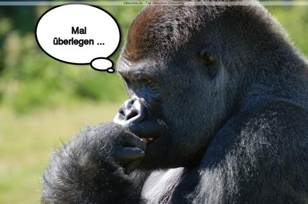 7450-affe_gorilla_denker_mal_uberlegen