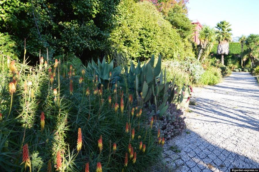 Jardim Botânico do Porto