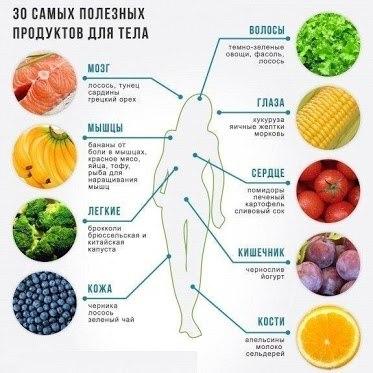 _Полезные продукты для тела
