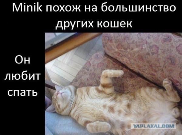 post-3-13585077416683