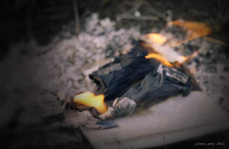 flame&pepel 01
