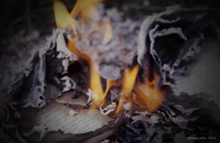 flame&pepel 03