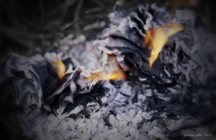 flame&pepel 05