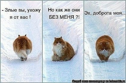 x_2409620d