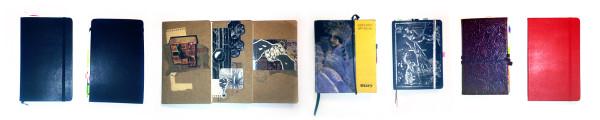 lifestream_notebooks-R-web