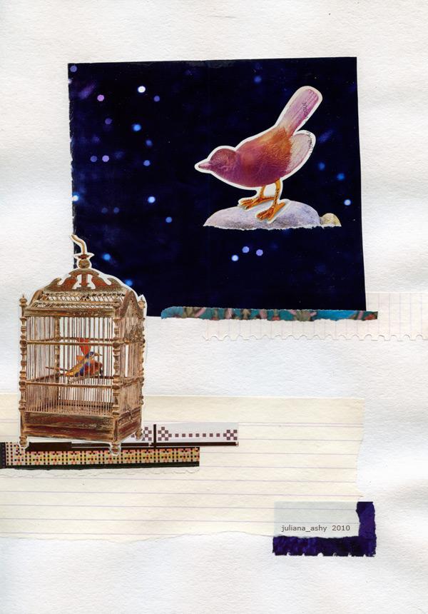 birds in cage 1