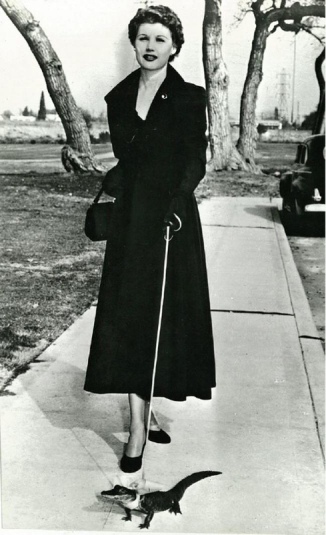 Выгуливая крокодильчика, 1950 год.