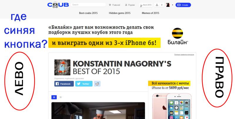 siniaja_knopka
