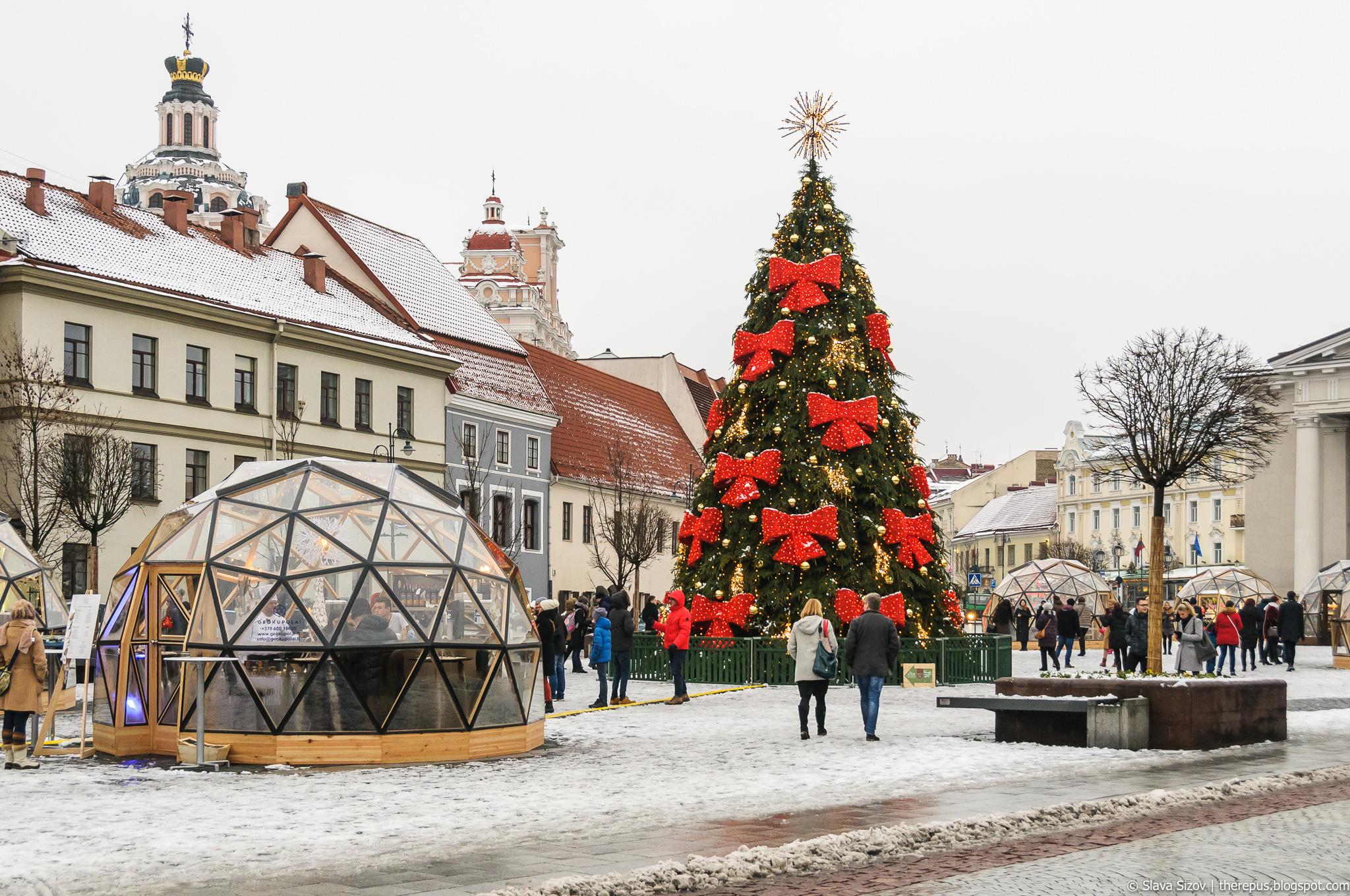 Про Рождественские елки 2017 #2