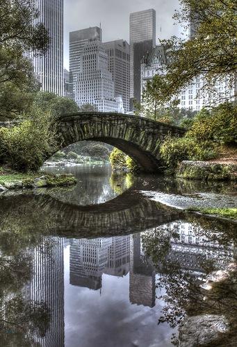 отражение в воде10