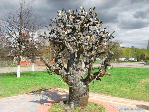 дерево1 мурманск.обл.