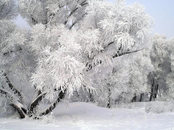 провожая зиму1
