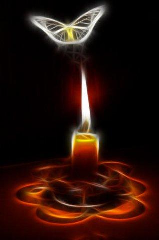 мотылек и свеча