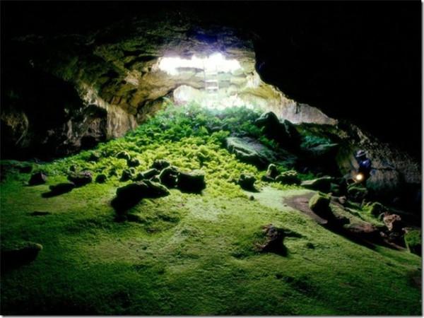 пещера калифорния