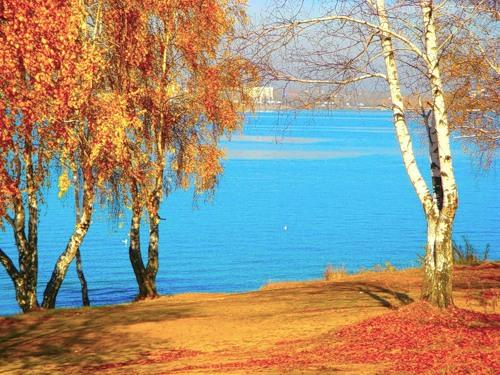 бирюза воды и золото осени