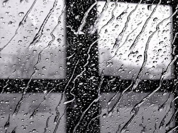 Опять зарядили дожди...