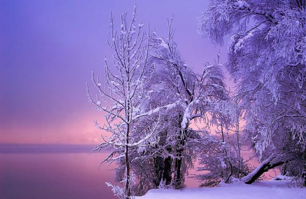 сиреневый вечер зима