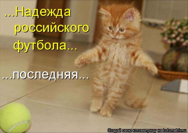 котенок -надежда футбола