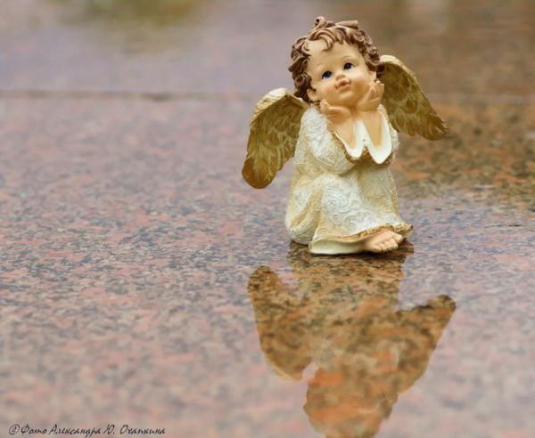 ангел7