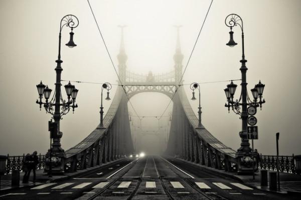 туман15