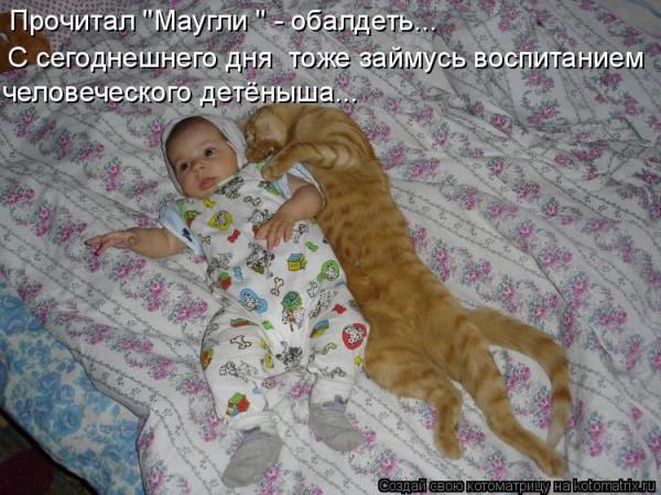 дети и кошки1
