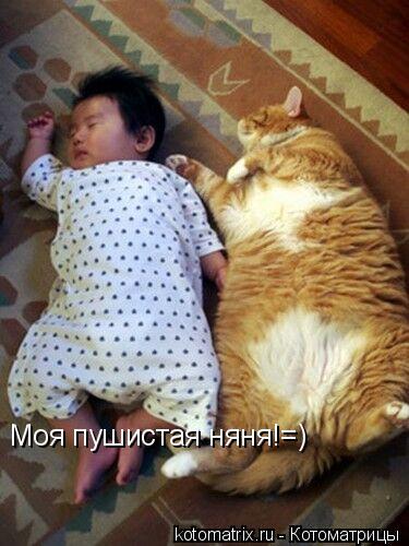 дети и кошки2