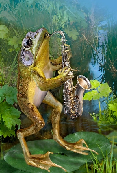 лягушка-саксофонистка