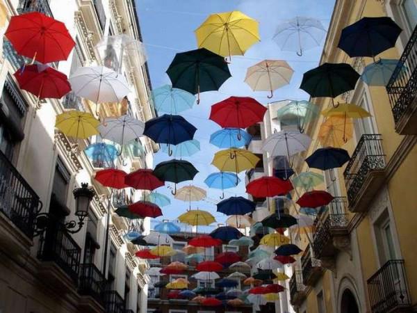 зонты1