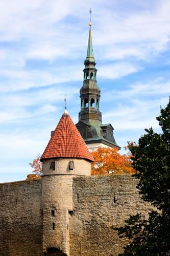 башня и ратуша таллин