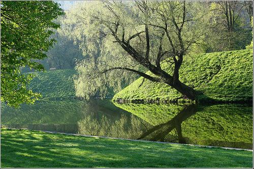 отражения в воде12н зеленый покой